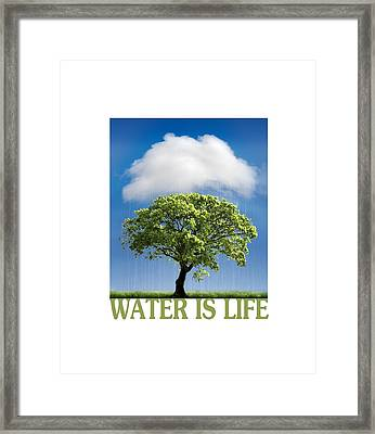 Water Is Life Framed Print by Mal Bray