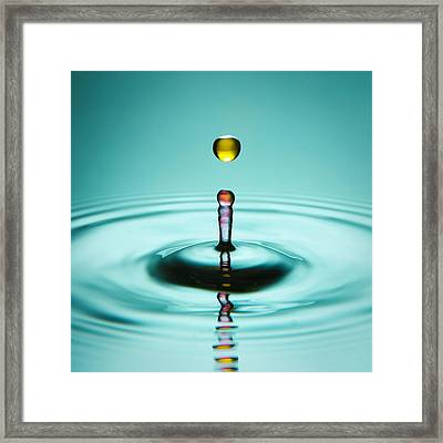 Water Landing Framed Print by Ryan Heffron