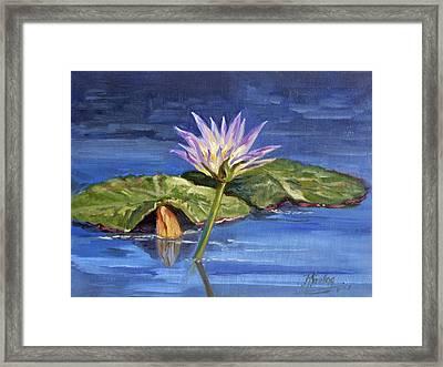 Water Lilie - Morning Framed Print