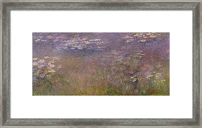 Water Lilies Agapanthus Framed Print by Claude Monet