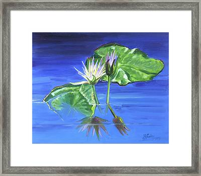 Water Lilies In Blue Framed Print