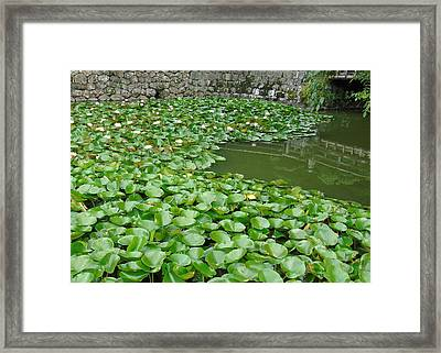 Water Lilies In The Moat Framed Print by Susan Lafleur