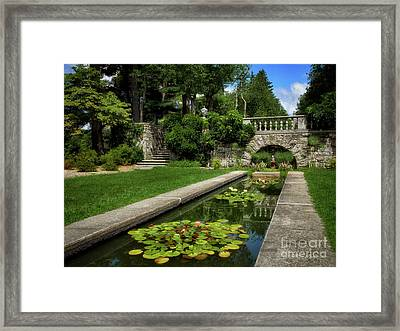 Water Lilies In The Pool Framed Print by Mark Miller