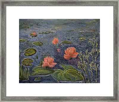 Water Lilies Lounge Framed Print by Felicia Tica