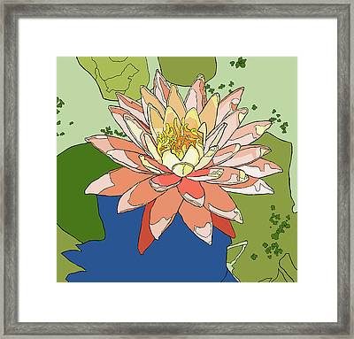 Water Lily And Duck Weed Framed Print