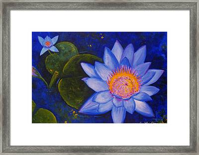 Water Lily Framed Print by Anne Marie Brown