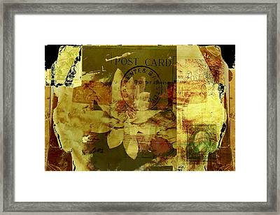 Water Lily Collage Framed Print by Ann Powell