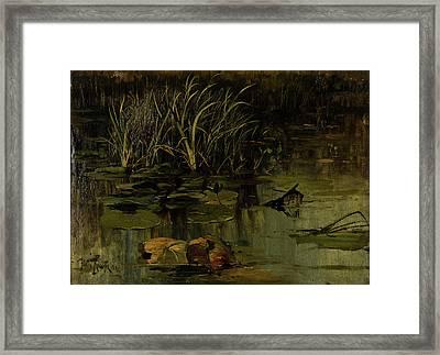 Water Lily Framed Print by Julius Von Klever