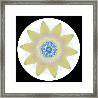 Water Lily Yellow Framed Print