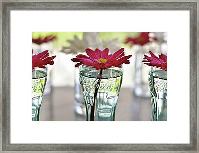 Water Lovers Framed Print