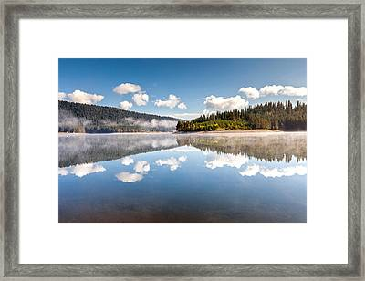 Water Mirror Framed Print by Evgeni Dinev
