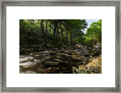 Water Of Mount Ida Framed Print