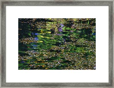 Water Reflections 11 Framed Print by Allen Beatty
