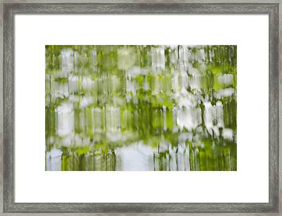 Framed Print featuring the photograph Water Reflections by Wanda Krack