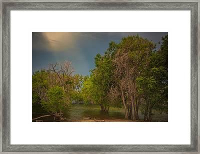 Water Refuge Framed Print