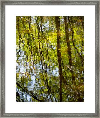 Water Ripples 1 Framed Print by Rebecca Cozart