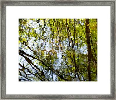 Water Ripples 2 Framed Print by Rebecca Cozart