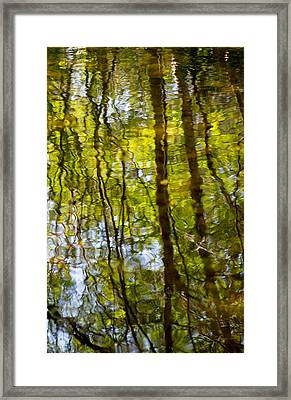 Water Ripples 3 Framed Print by Rebecca Cozart