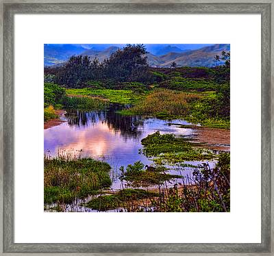 Water Scene Beauty 3 Framed Print