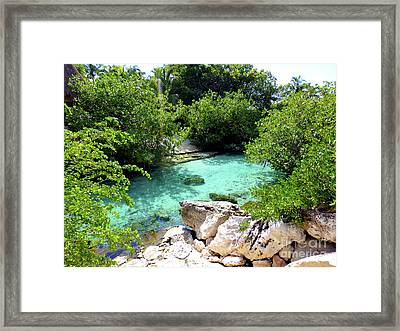 Framed Print featuring the photograph Water Shallows by Francesca Mackenney