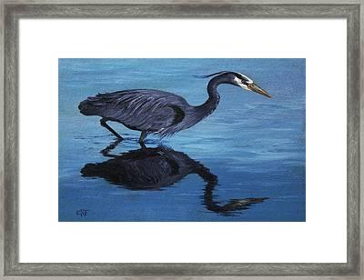 Water Stalker - Blue Heron Framed Print by Crista Forest