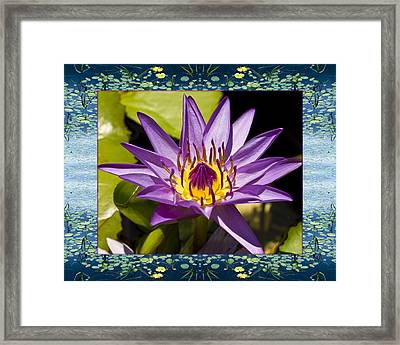 Framed Print featuring the photograph Water Star by Bell And Todd