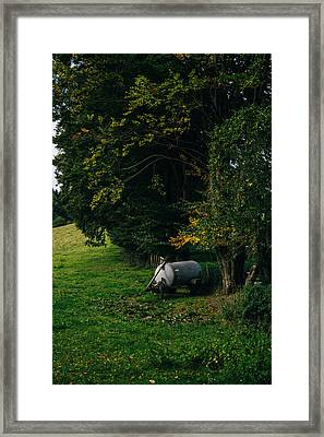 Water Tank In A Pasture Framed Print