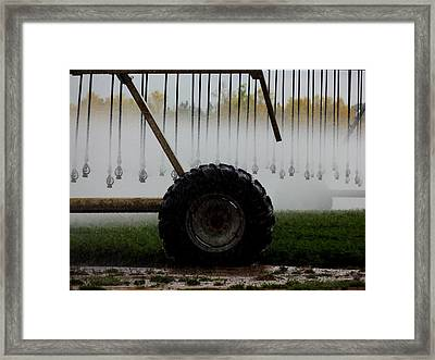 Water The Carrots Framed Print