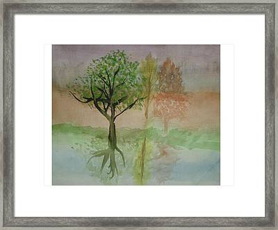 Water Trees Framed Print by Hal Newhouser