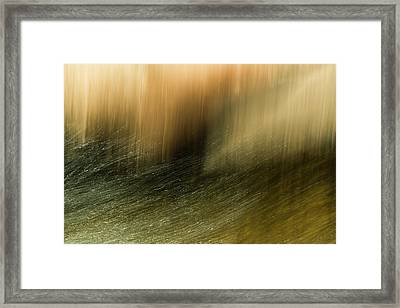 Framed Print featuring the photograph Water Tresses by Deborah Hughes