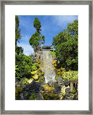 Water Works Framed Print by Barbara Middleton