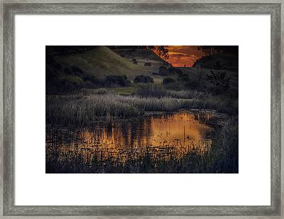 Waterbird Preserve Sunrise Framed Print