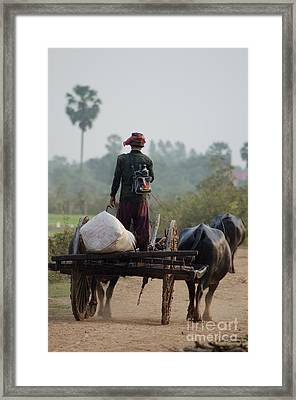 Waterbuffalo Driver With Angry Birds Tote Bag Framed Print