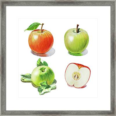 Framed Print featuring the painting Watercolor Apples Illustration by Irina Sztukowski