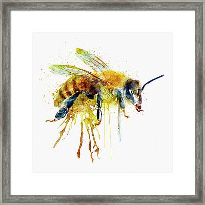 Watercolor Bee Framed Print by Marian Voicu