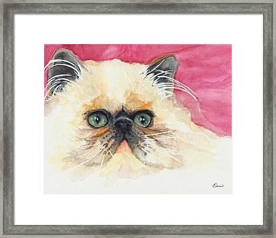 Watercolor Cat 11 Lazy Cat Framed Print