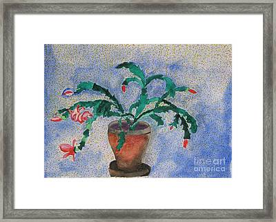 Watercolor Christmas Cactus First Bloom Framed Print by James SheppardIII