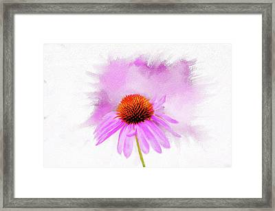 Watercolor Cone Flower Framed Print