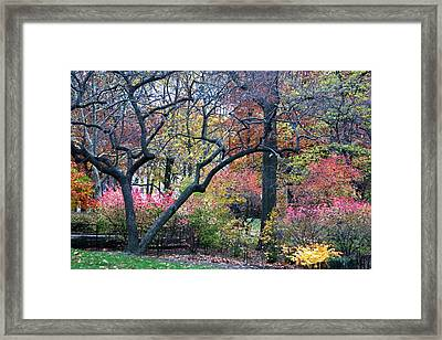 Watercolor Forest Framed Print