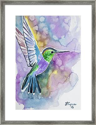 Watercolor - Green-crowned Wood Nymph Framed Print
