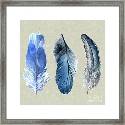 Watercolor Hand Painted Feathers Framed Print by Heinz G Mielke
