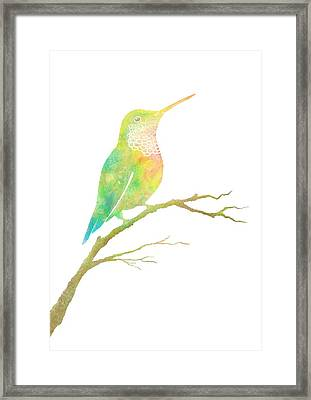 Watercolor Hummingbird Framed Print