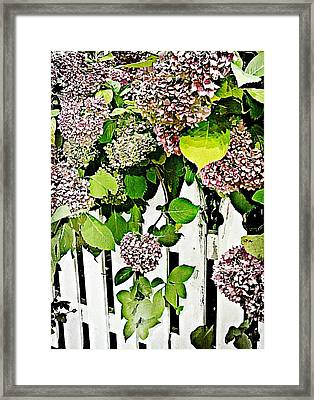 Watercolor Framed Print by JAMART Photography
