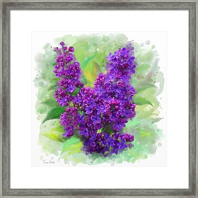 Watercolor Lilac Framed Print