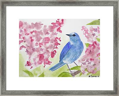 Framed Print featuring the painting Watercolor - Mountain Bluebird by Cascade Colors
