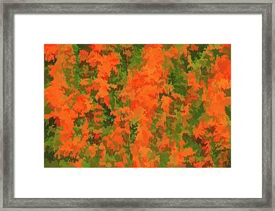 Watercolor Orange Parade Framed Print