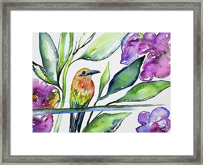 Framed Print featuring the painting Watercolor - Rufous Motmot by Cascade Colors