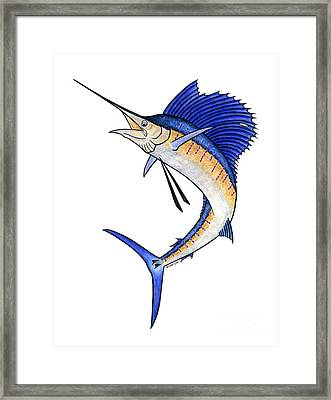 Watercolor Sailfish Framed Print