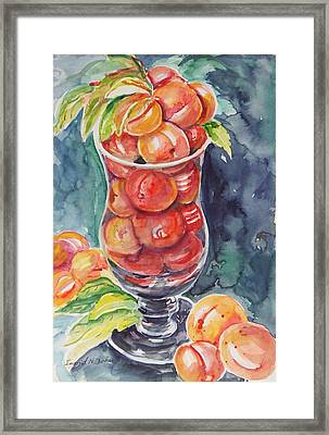 Watercolor Series No. 214 Framed Print