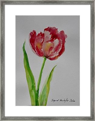 Watercolor Series No.  228 Framed Print